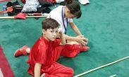 ფოთელი 8 წლის საბა გოგია უშუ კუნგფუში მსოფლიო ჩემპიონი გახდა