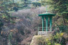 მაია ბითაძე: ბოტანიკური ბაღის ტერიტორიას სტატუსი არ ეცვლება