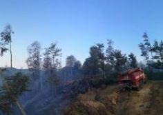 საგანგებო სიტუაციების მართვის სამსახური ხაშურში ტყის ხანძრის ლოკალიზების სამუშაოებისთვის დამატებითი სახანძრო-სამაშველო ტექნიკის მობილიზებას ახდენს