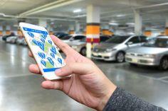 თბილისში Car Sharing-ის პროგრამა დღეს ამოქმედდა
