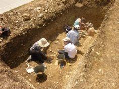 კიდევ ერთი არქეოლოგიური საგანძური კახეთში - ექსპედიციამ 8 გეოლოგიური ფენის ქვეშ უნიკალური არტეფაქტები აღმოაჩინა
