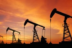 ნავთობის ფასი შემცირდა